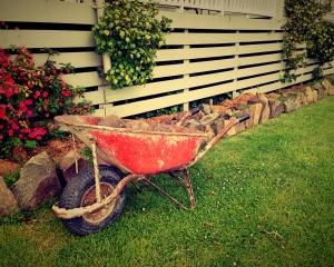 Fernkurs Gartengestaltung